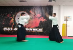 bokken aikido barbuto v dan