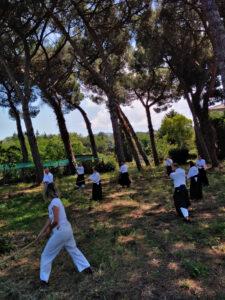 aikido presso villa mergè